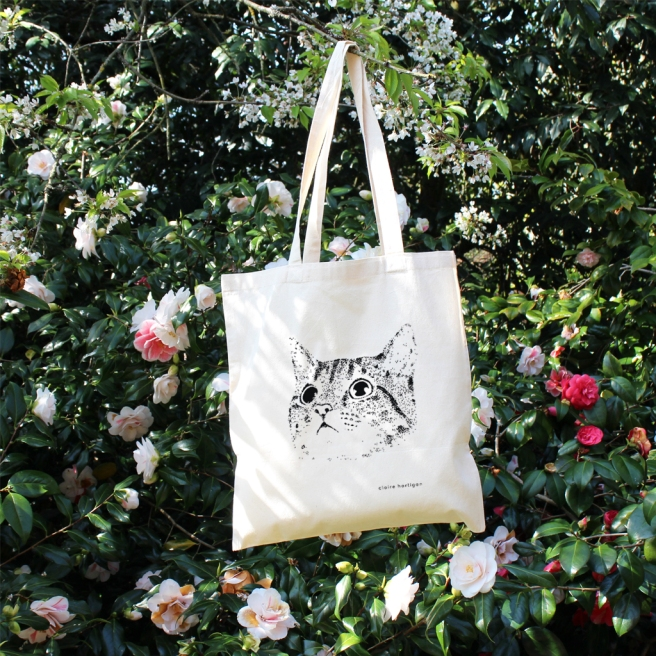 Cat Bag Rose bush 2